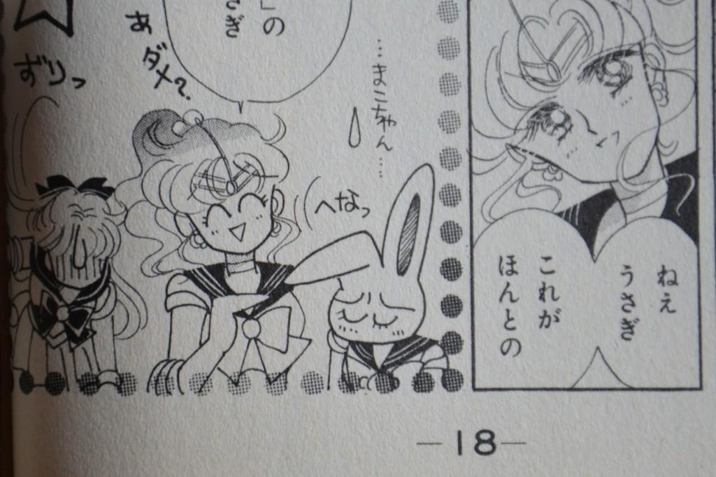 Makoto makes a joke about Tsukino Usagi meaning rabbit of the moon