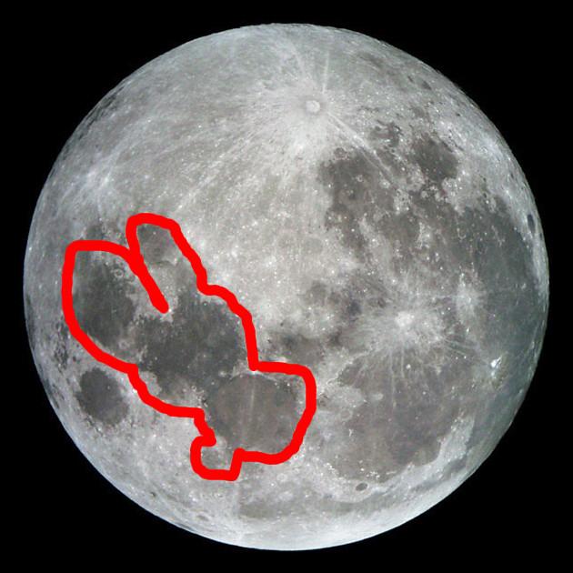 The rabbit on the moon
