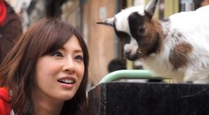 Keiko Kitagawa and a baby goat, see?