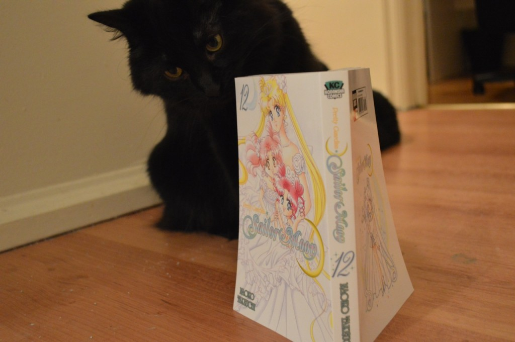Luna reading vol. 12 of the Sailor Moon manga