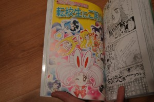 Chibiusa's Picture Diary - Beware The Transfer Student