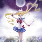 Sailor Moon Memorial Tribute Album vinyl edition - Moonlight Densetsu and Tuxedo Mirage