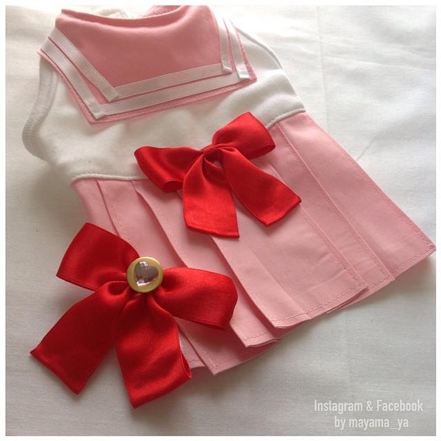 Chihuahuas in Sailor Moon costumes - Sailor Chibi Moon costume
