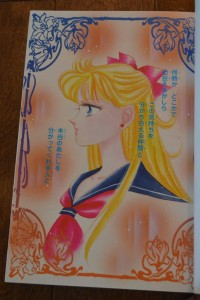 Codename: Sailor V - Complete Edition Manga - Colour pages - Profile