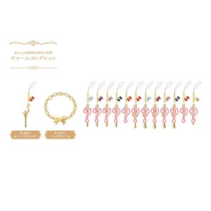 Sailor Moon Crystal DVD and Blu-Ray Charm Bracelet