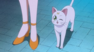 Sailor Moon Crystal Act 8 - Artemis winking