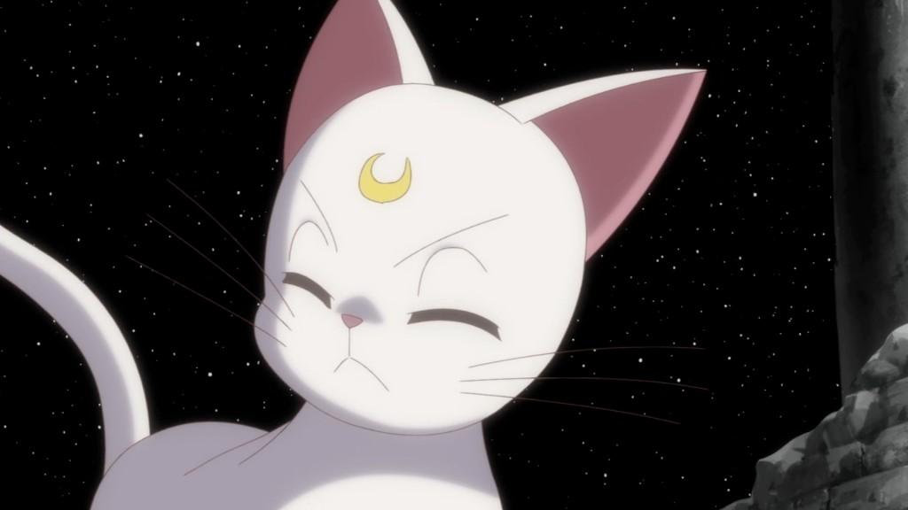 Sailor Moon Crystal Act 14 - Artemis