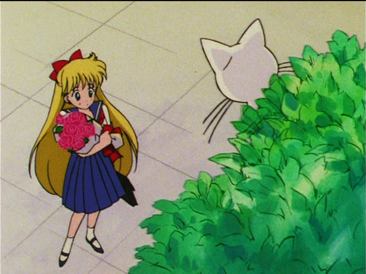 Sailor Moon S episode 100 - Minako gets flowers from Artemis