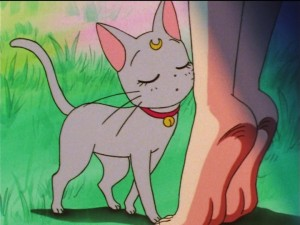 Sailor Moon SuperS episode 137 - Diana smelling Fish Eye