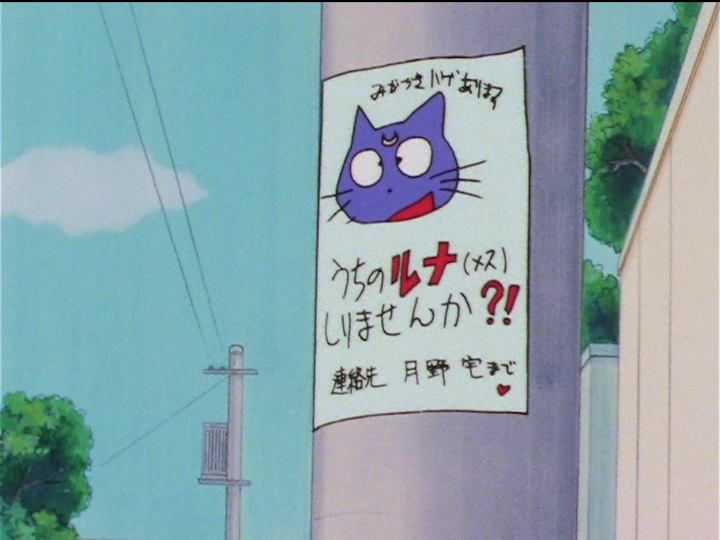 Sailor Moon Sailor Stars episode 178 - Lost cat Luna