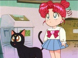Sailor Moon Sailor Stars episode 192 - Luna watches Chibi Chibi