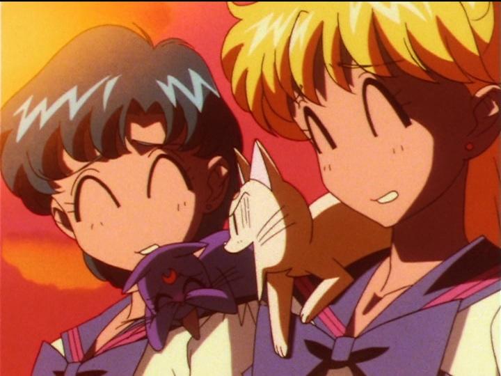 Sailor Moon Sailor Stars episode 200 - Artemis annoyed that Luna wants Yaten