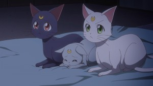 Sailor Moon Crystal Act 34 - The cats mourn the death of Chibiusa