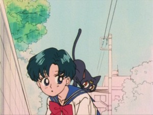 Sailor Moon episode 8 - Japanese DVD - Ami and Luna