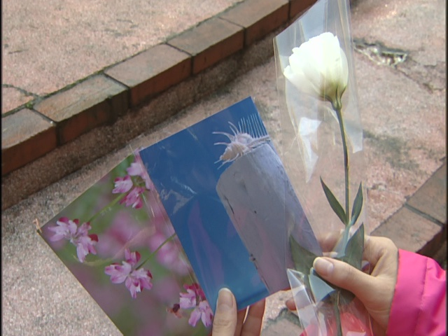 Live Action Pretty Guardian Sailor Moon Act 13 - Postcards and a flower for Shin
