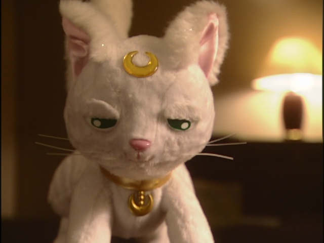 Live Action Pretty Guardian Sailor Moon Act 19 - Artemis not impressed
