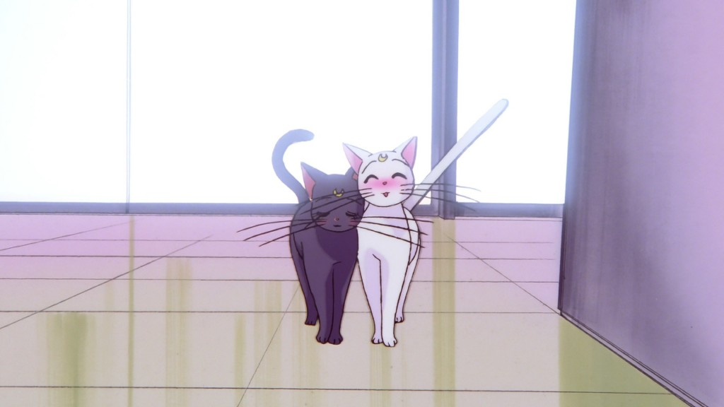Sailor Moon S The Movie - Luna and Artemis
